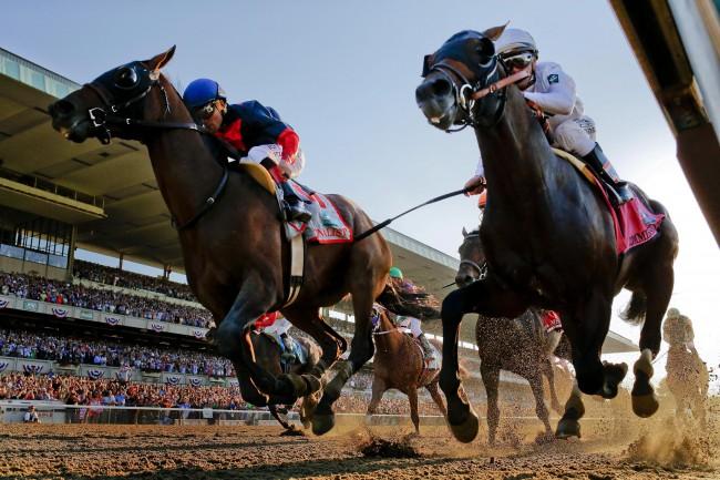 Panduan Daftar Judi Balap Kuda SBOBET